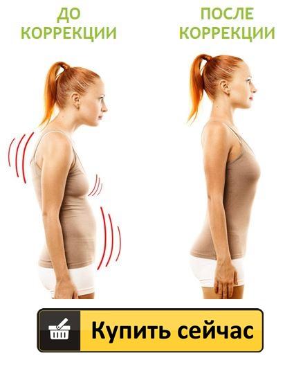 posture support купить